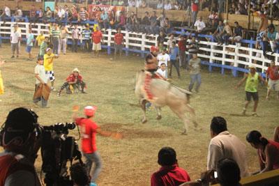 Santa Rosa bull rider
