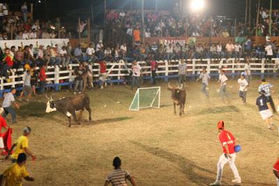 Santa Rosa - guarding the net