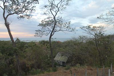 Tamarindo---view