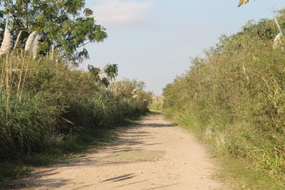 Costanera Sur - ecological reserve