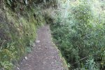 Trail to Inca Bridge