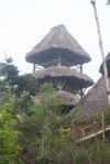 Observation tower at the lodge
