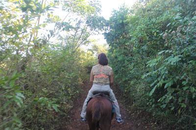 Trail ride, Vinales