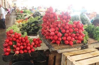 Valladolid market