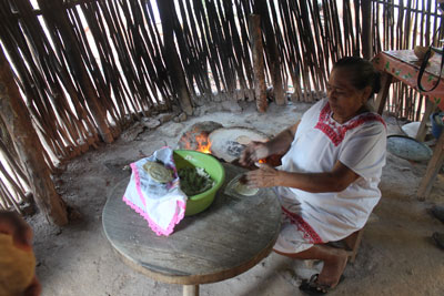 Visit to Mayan home - tortilla making